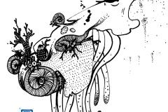 2016-05-13_snail_occupation_1200px