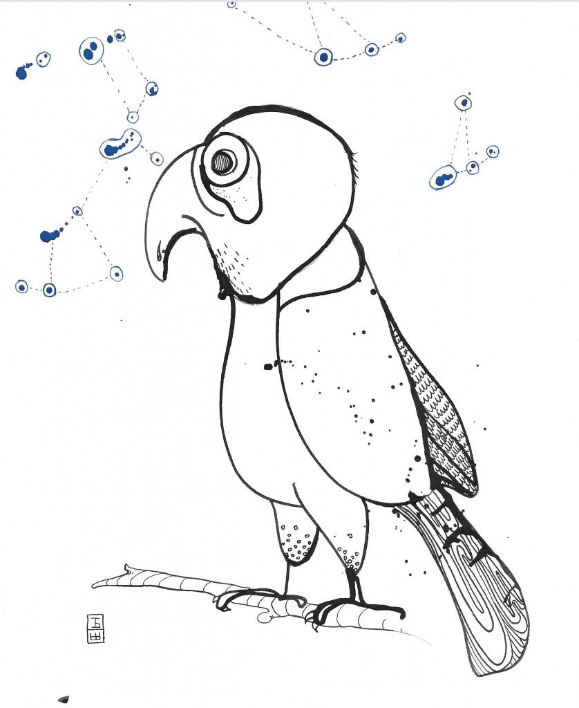 2016-01-08_falcon