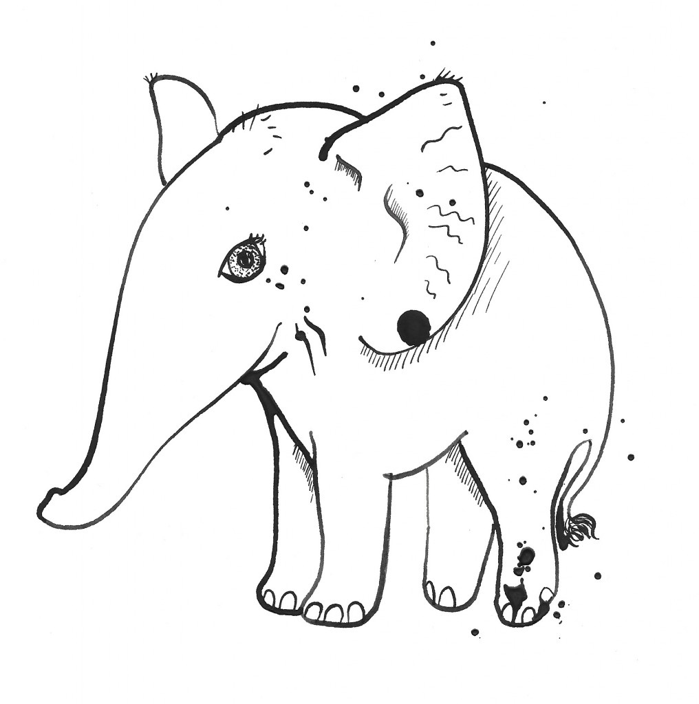 2016-01-13_elephant1